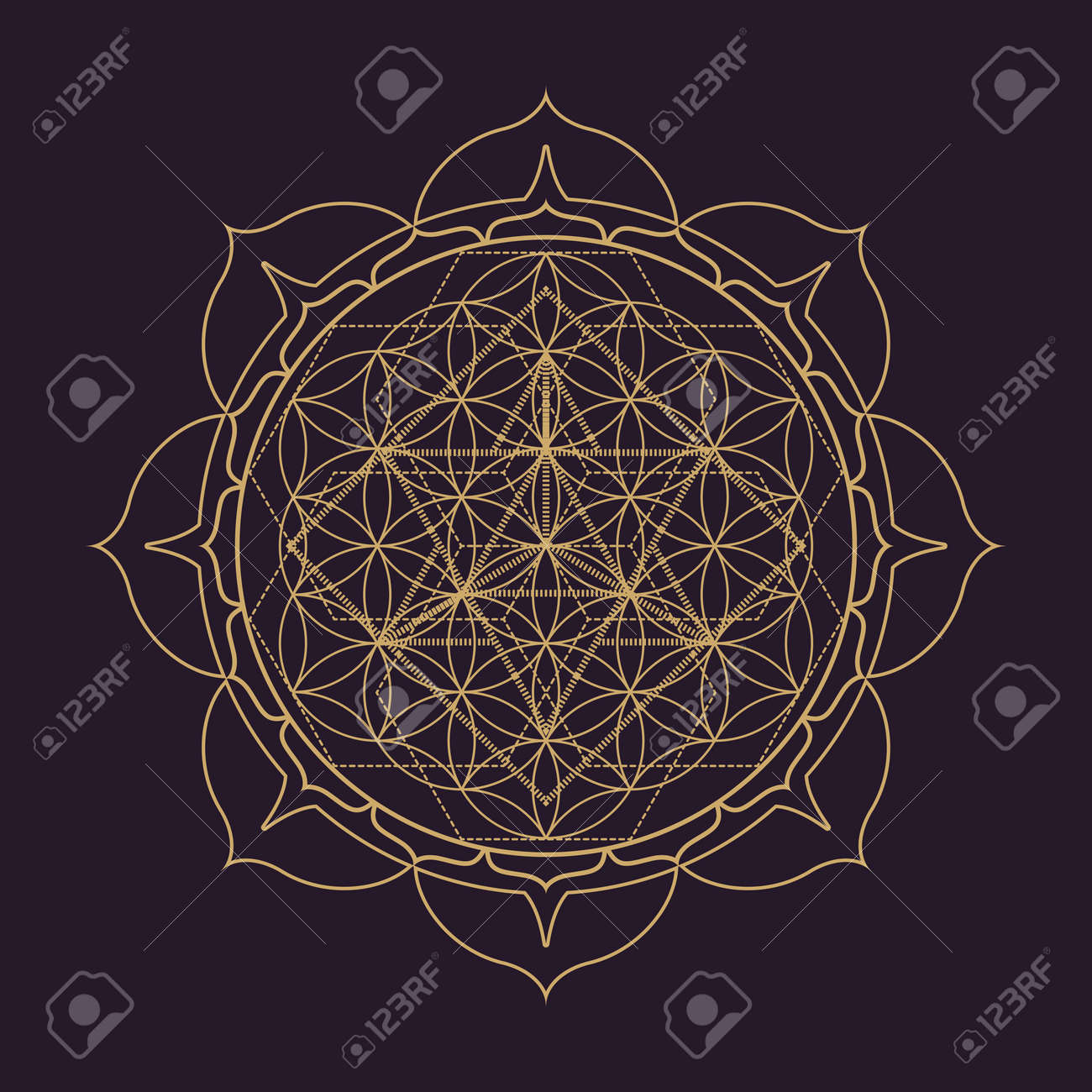vector gold monochrome design abstract mandala sacred geometry illustration Flower of life Merkaba lotus isolated dark brown background - 67257101