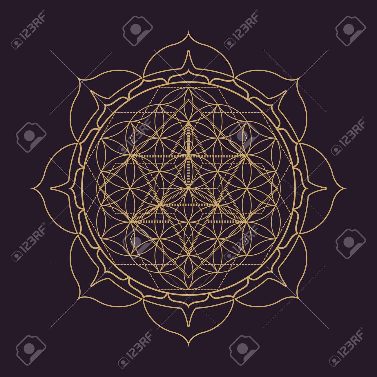 Dessin Monochrome Vecteur Dor Abstrait Mandala Géométrie Sacrée