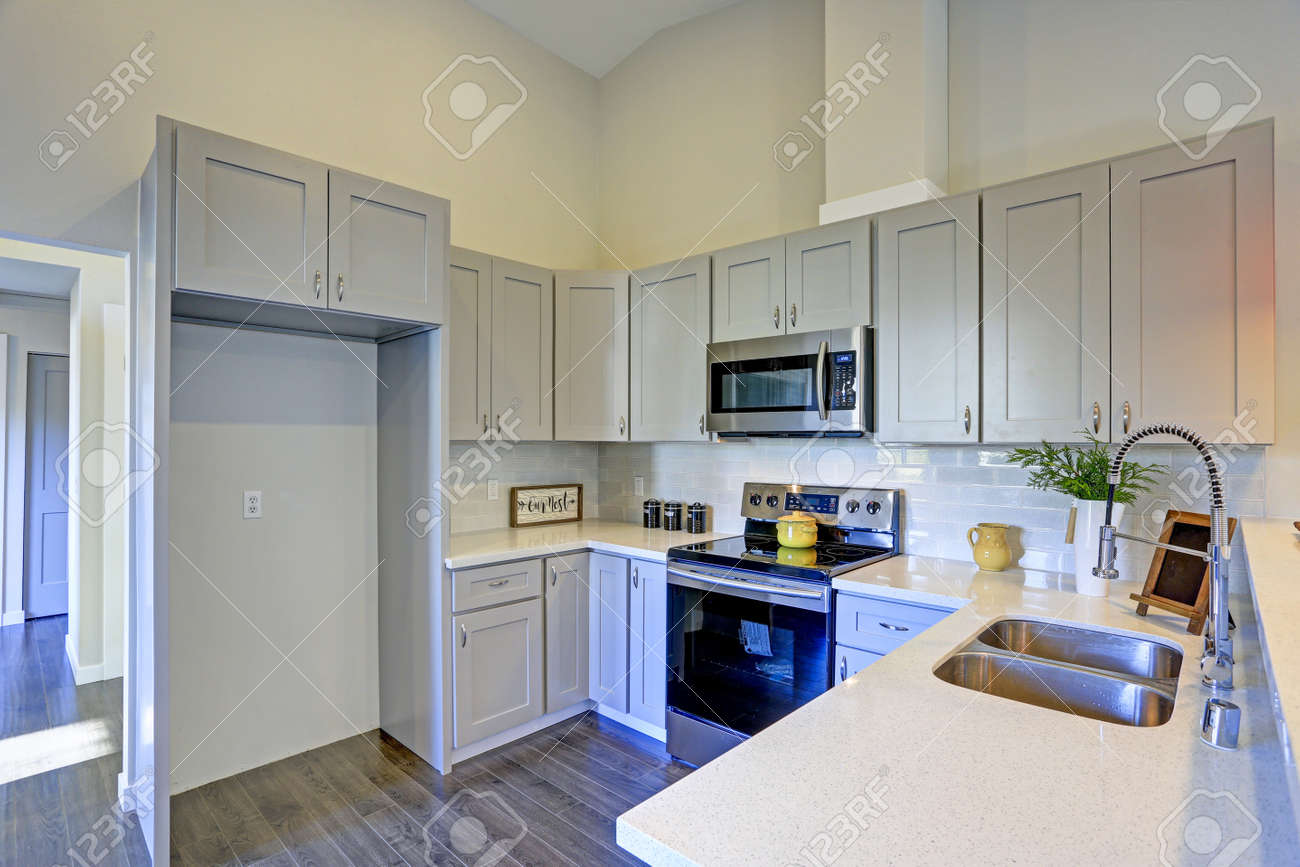 Admirable Light Grey Kitchen Room Interior With Vaulted Ceiling Grey Cabinetry Interior Design Ideas Inesswwsoteloinfo