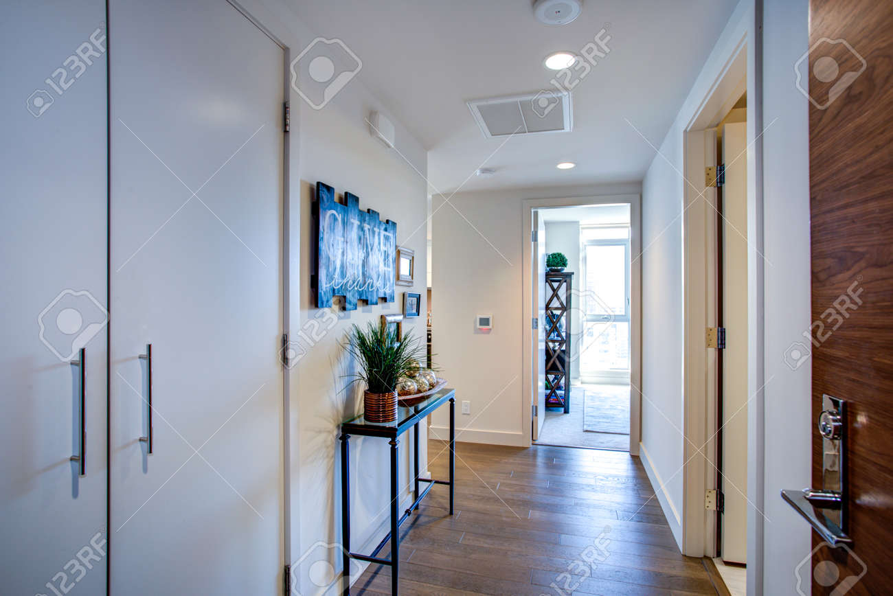 Luxury apartment interior showcases white foyer with pure white walls, black console table atop hardwood floor. - 97392267