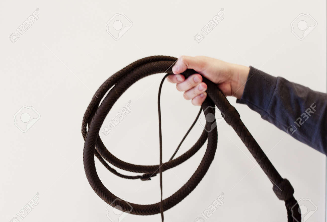 bullwhip coiled in hand against white background Stock Photo - 15889191