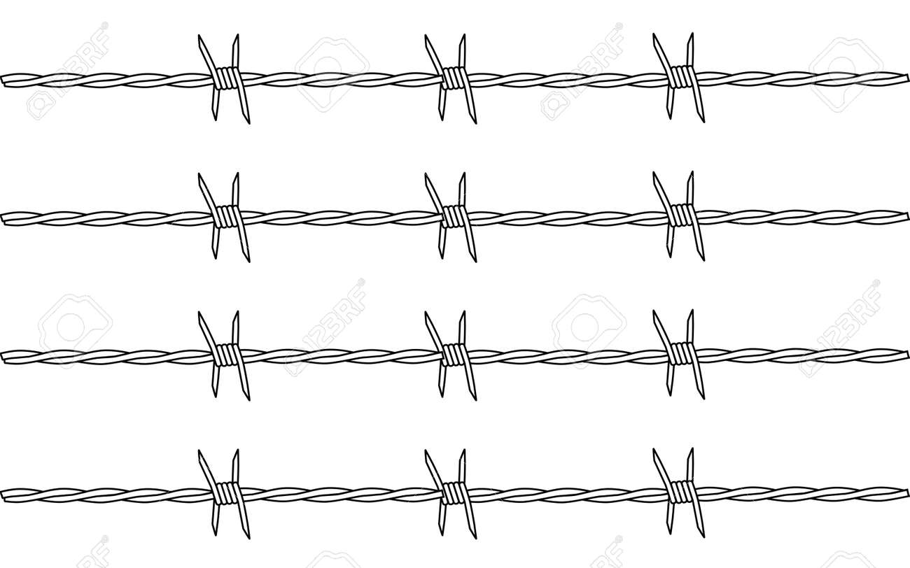 A Section Of Barbed Wire Fencing Isolated On A White Background ...