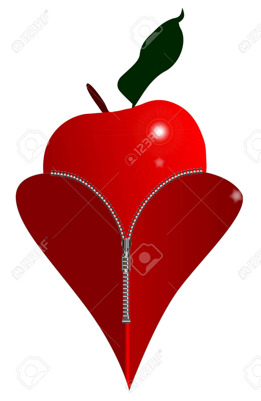 A red heart with a zipper showing a red apple rising from within a red heart with a zipper showing a red apple rising from within stock vector biocorpaavc Images