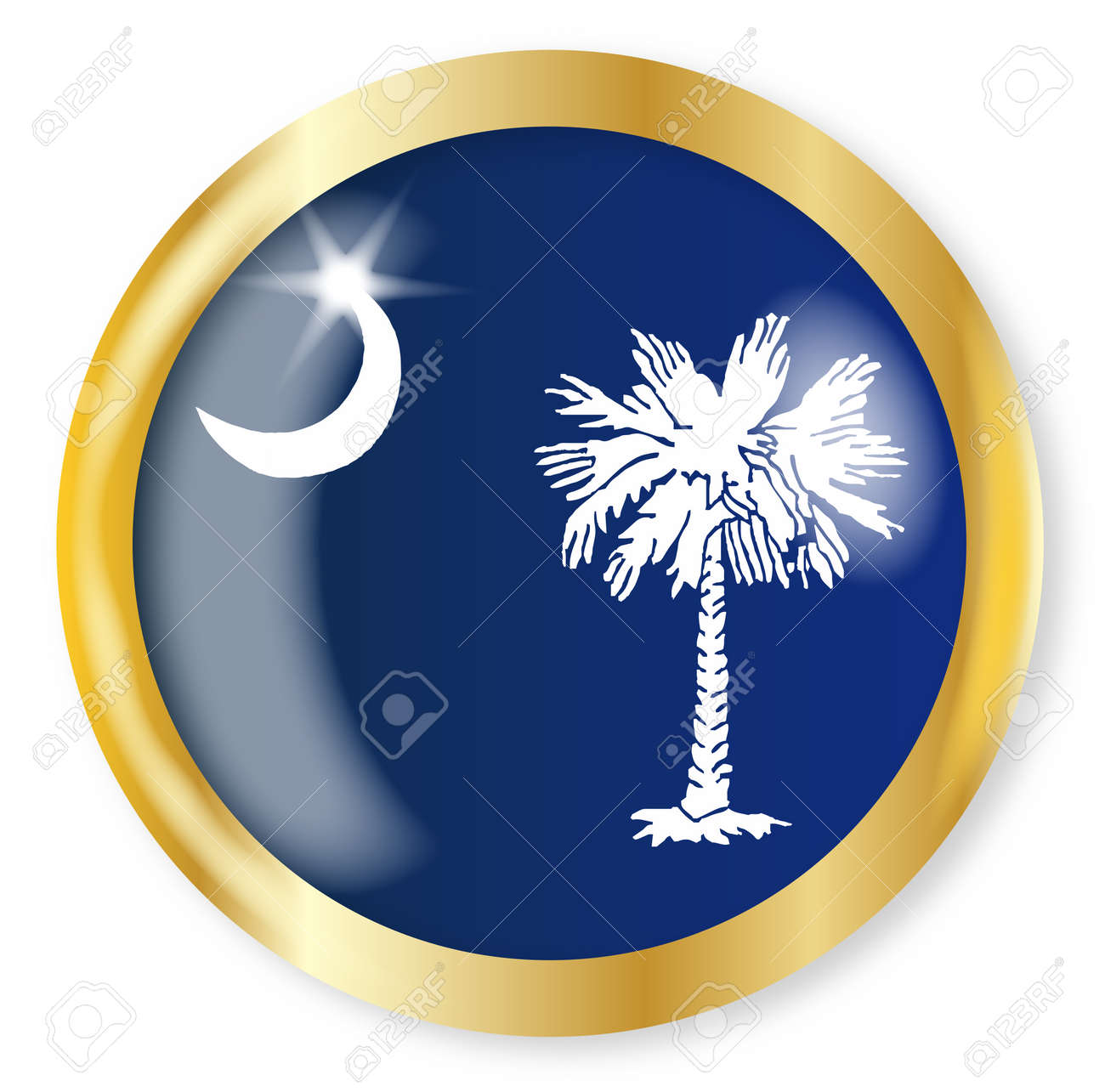 934 South Carolina State Stock Vector Illustration And Royalty ...