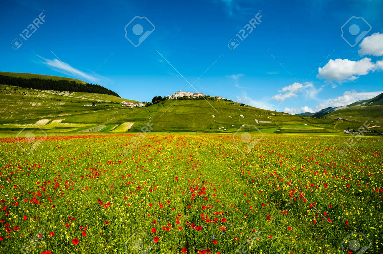 Castelluccio di Norcia, small town among Sibillini mountains, almost completely destroyed after the earthquake, during fields flowering (June 2020). - 150459169