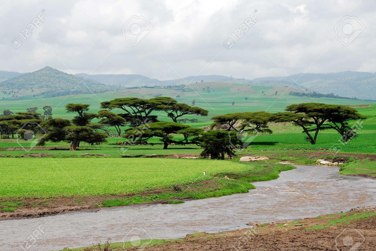 Ethiopia highlands Stock Photo - 12454271