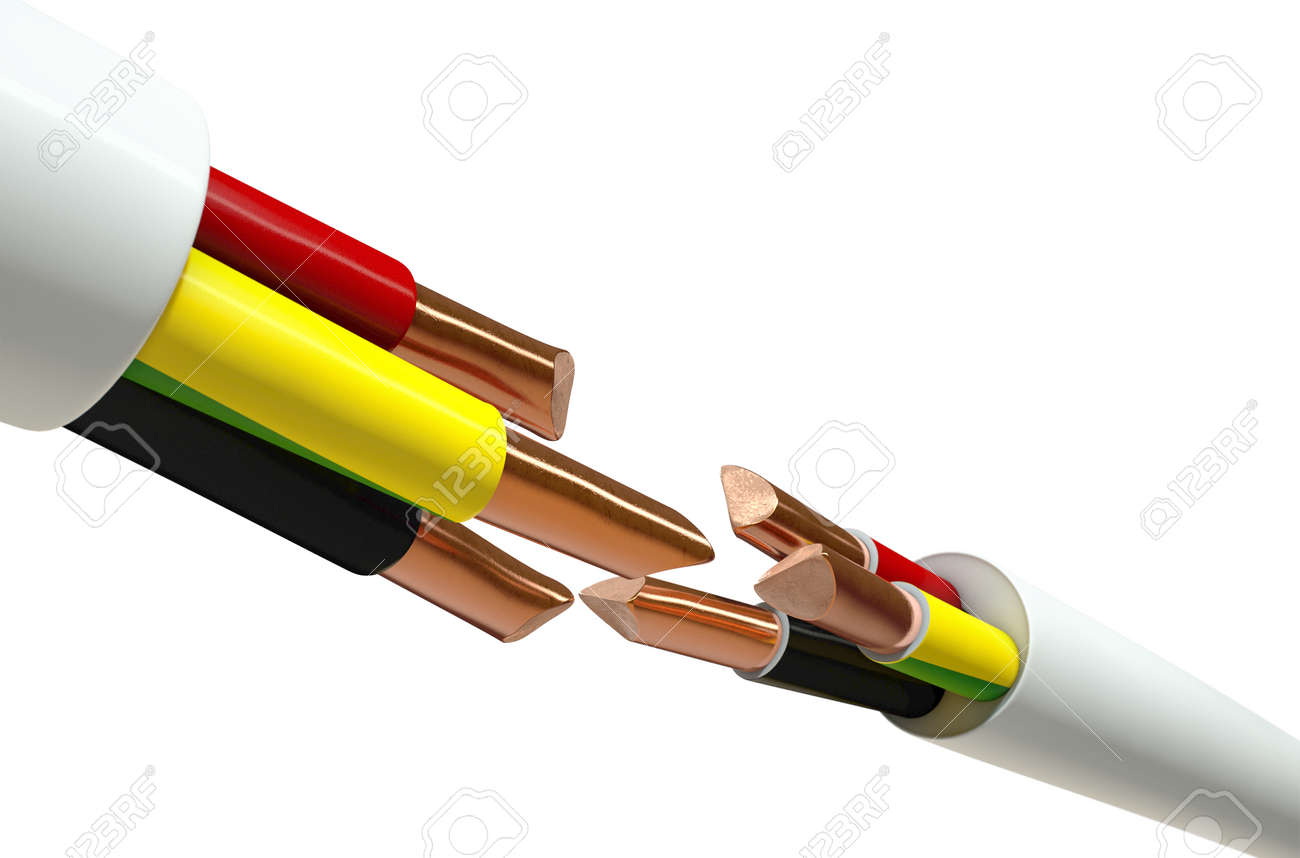 Two Opposing Regular Three Core Insulated Electrical Cable With ...