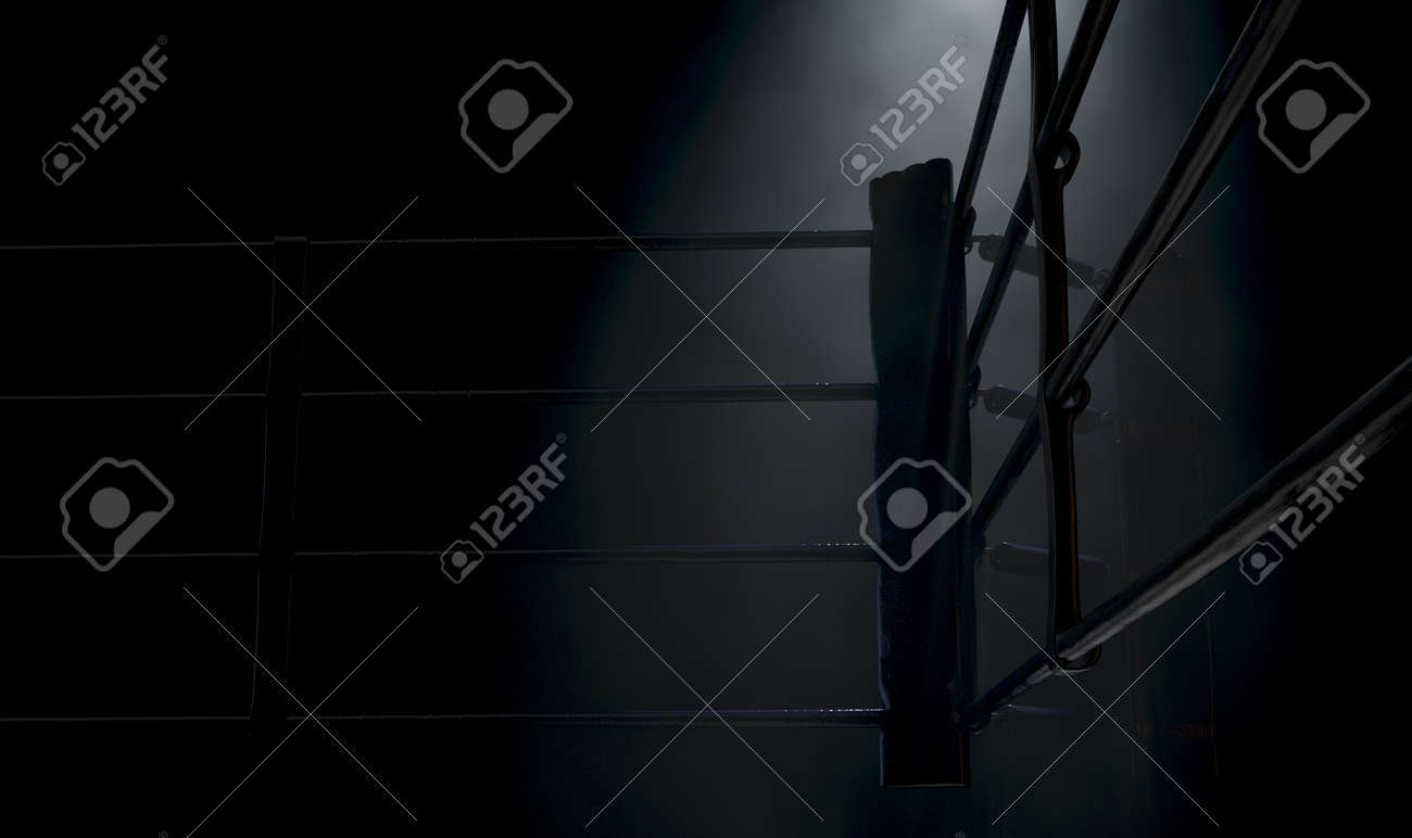 A dramatic closeup of a dimly spotlit corner of a boxing ring surrounded by ropes on a dark isolated background - 3D render - 148008964