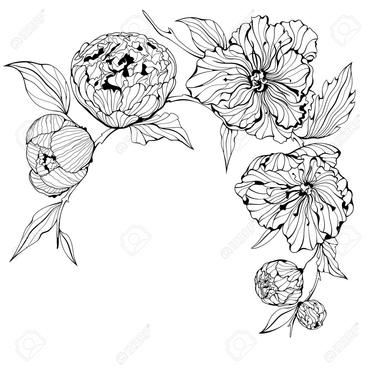 Peony flower isolated on white stock vector 368014568 shutterstock - 17 Best Ideas About Peonies Tattoo On Pinterest Ink Peony