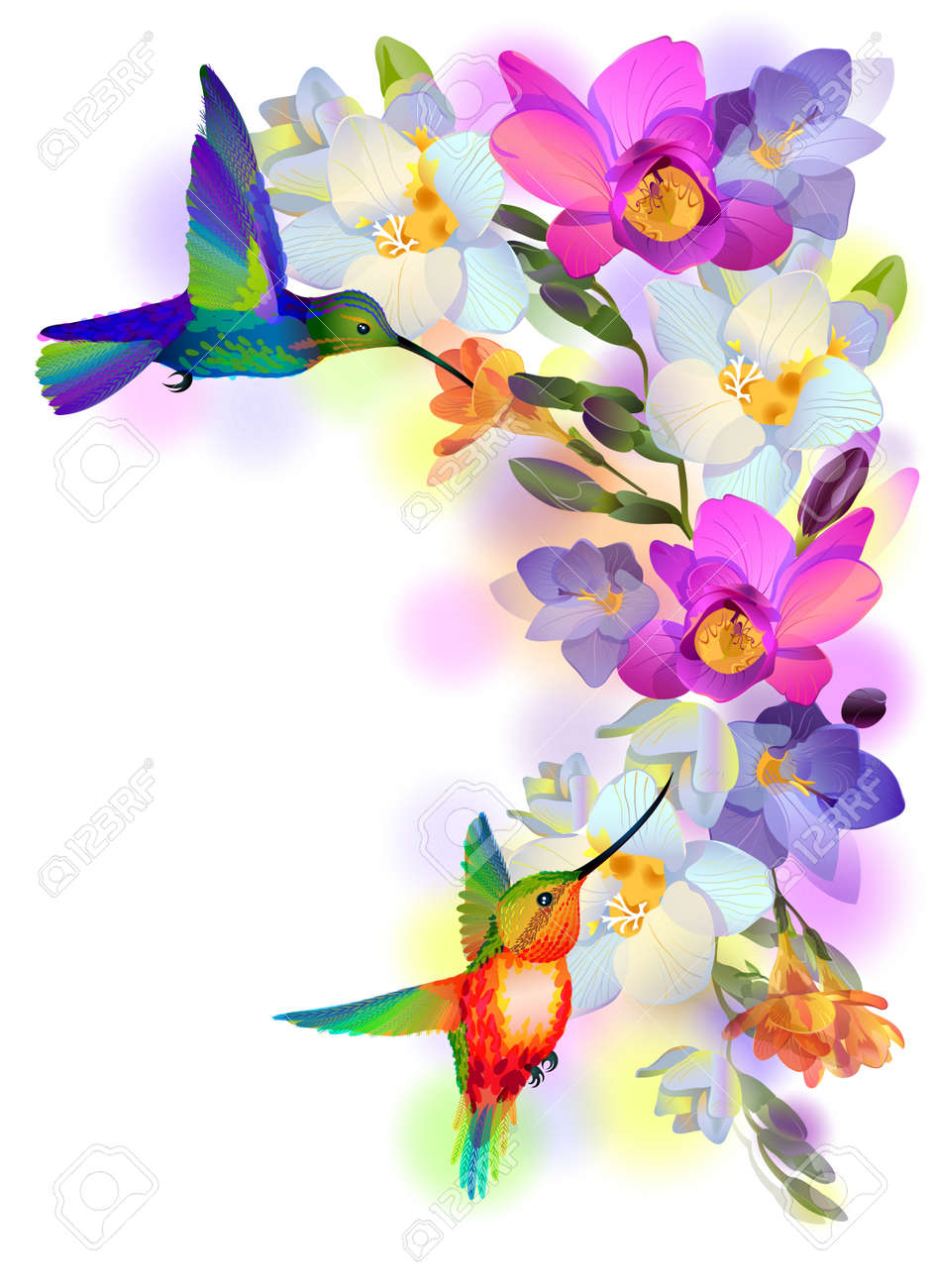 illustration greeting background with flitting humming-bird which brings gentle branch of beautiful pink orchids Stock Vector - 18127678