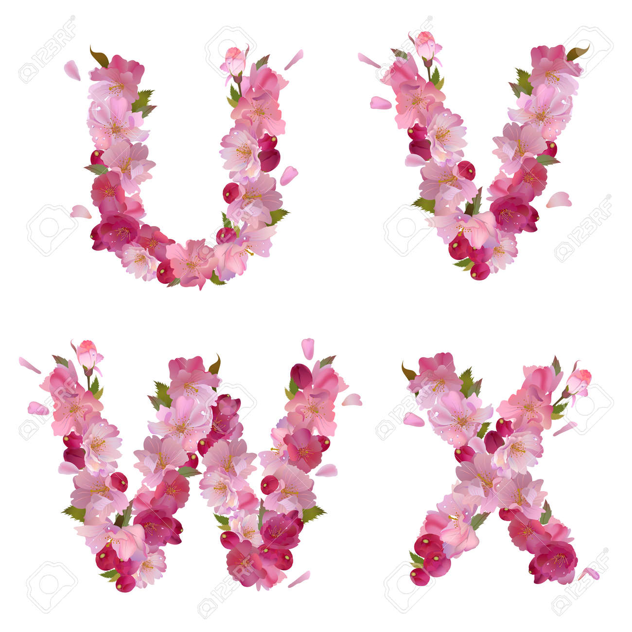 Spring Alphabet With Gentle Pink Sakura Flowers Letters U V W X