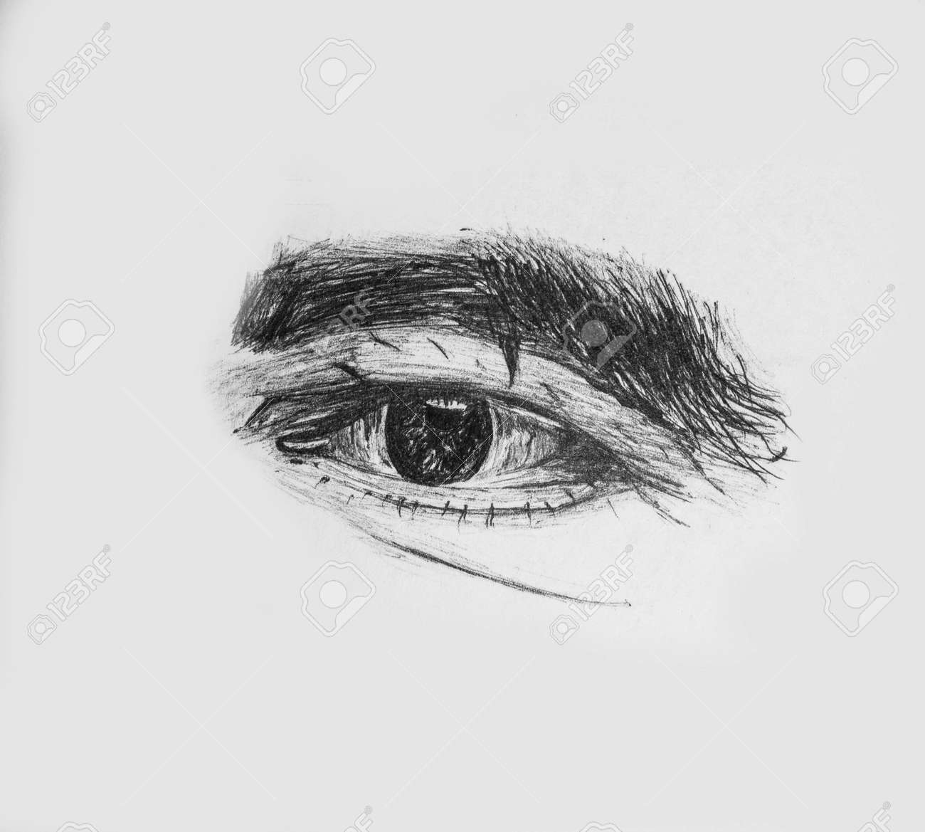 Hand Drawn Human Eye Of A Old Man With Thick Eyebrows Detailed