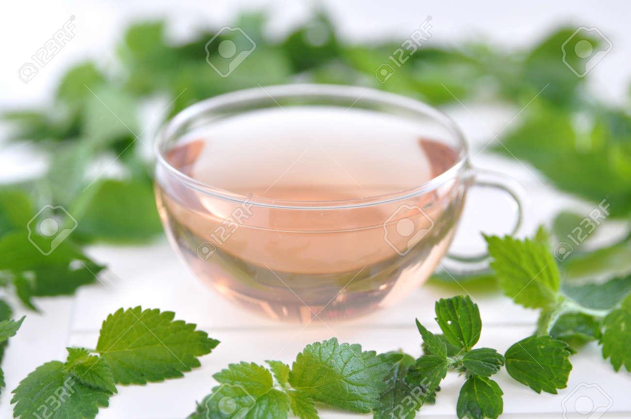 Cup of herbal tea Stock Photo - 19395845