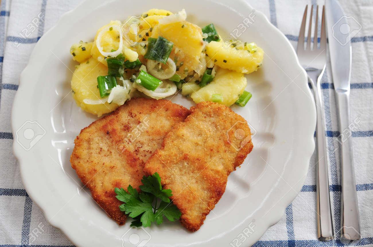 Wiener Schnitzel Stock Photo - 21857820