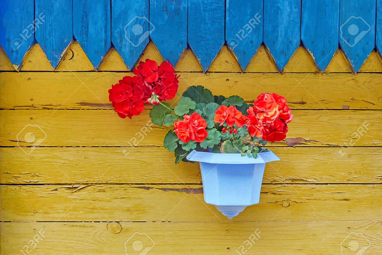 Hanging Basket With Pink Flower Plants On The Wooden Wall Home