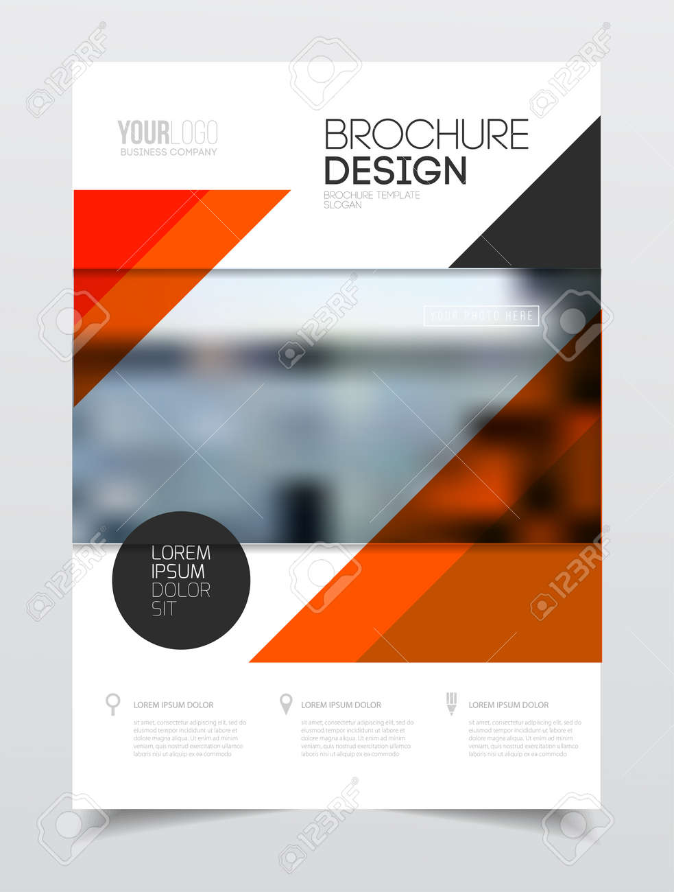 catalogue cover design annual report vector illustration template