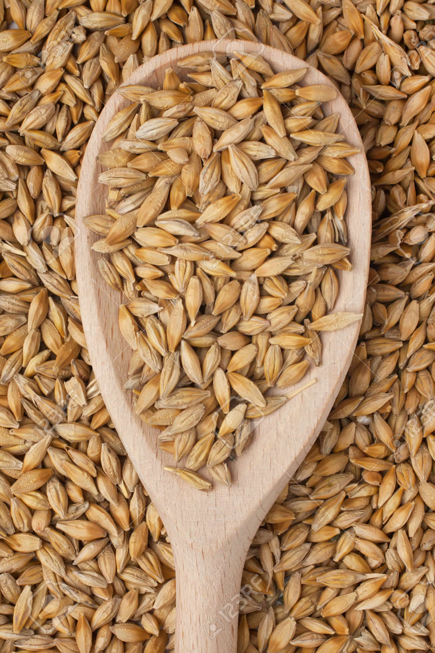 Barley in a wooden spoon on a background of barley Stock Photo - 18058000