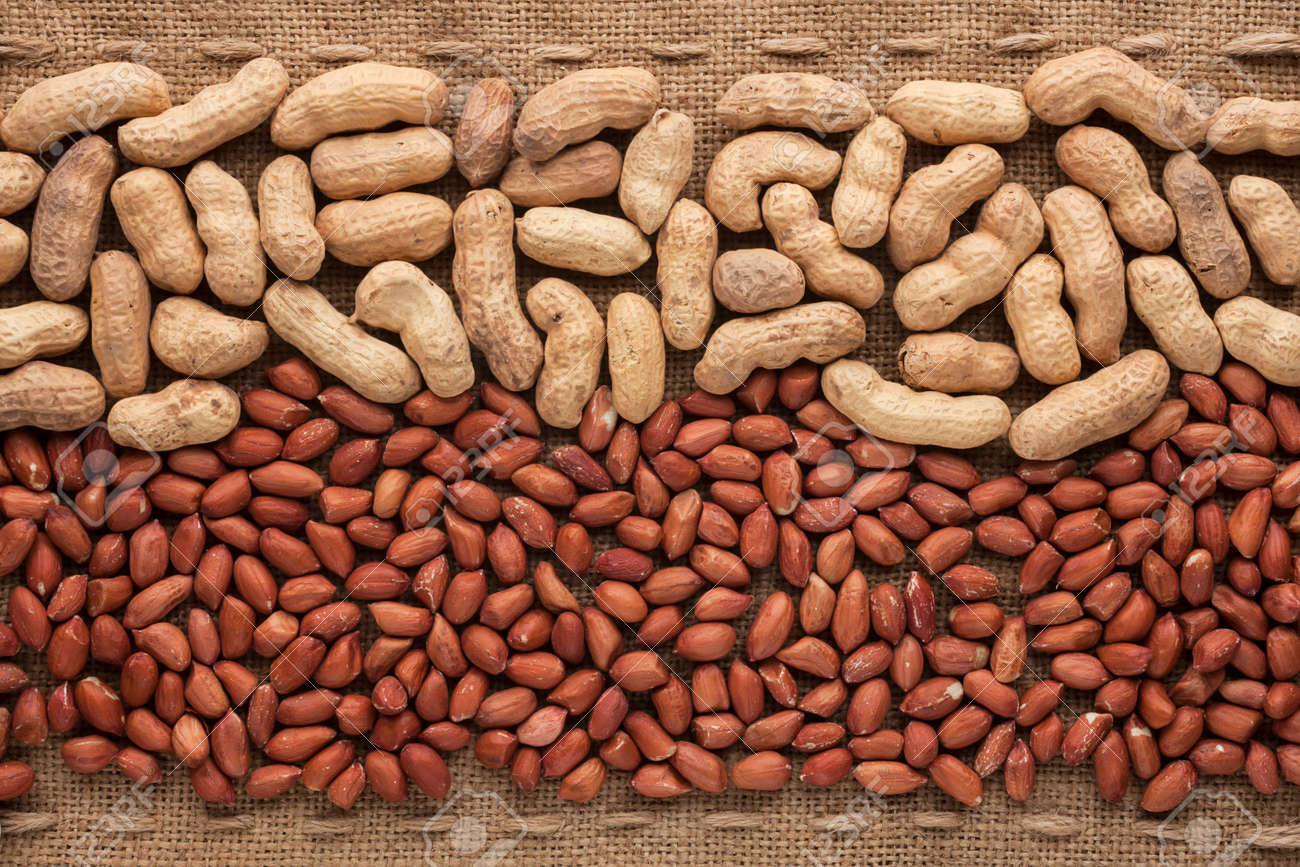 Image result for shelled peanuts