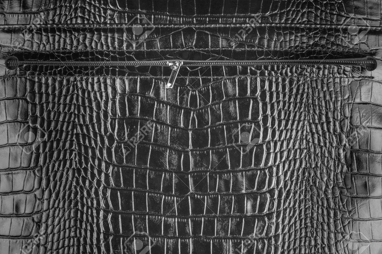 Zipper sewn into natural leather, can use as background Stock Photo - 26503990