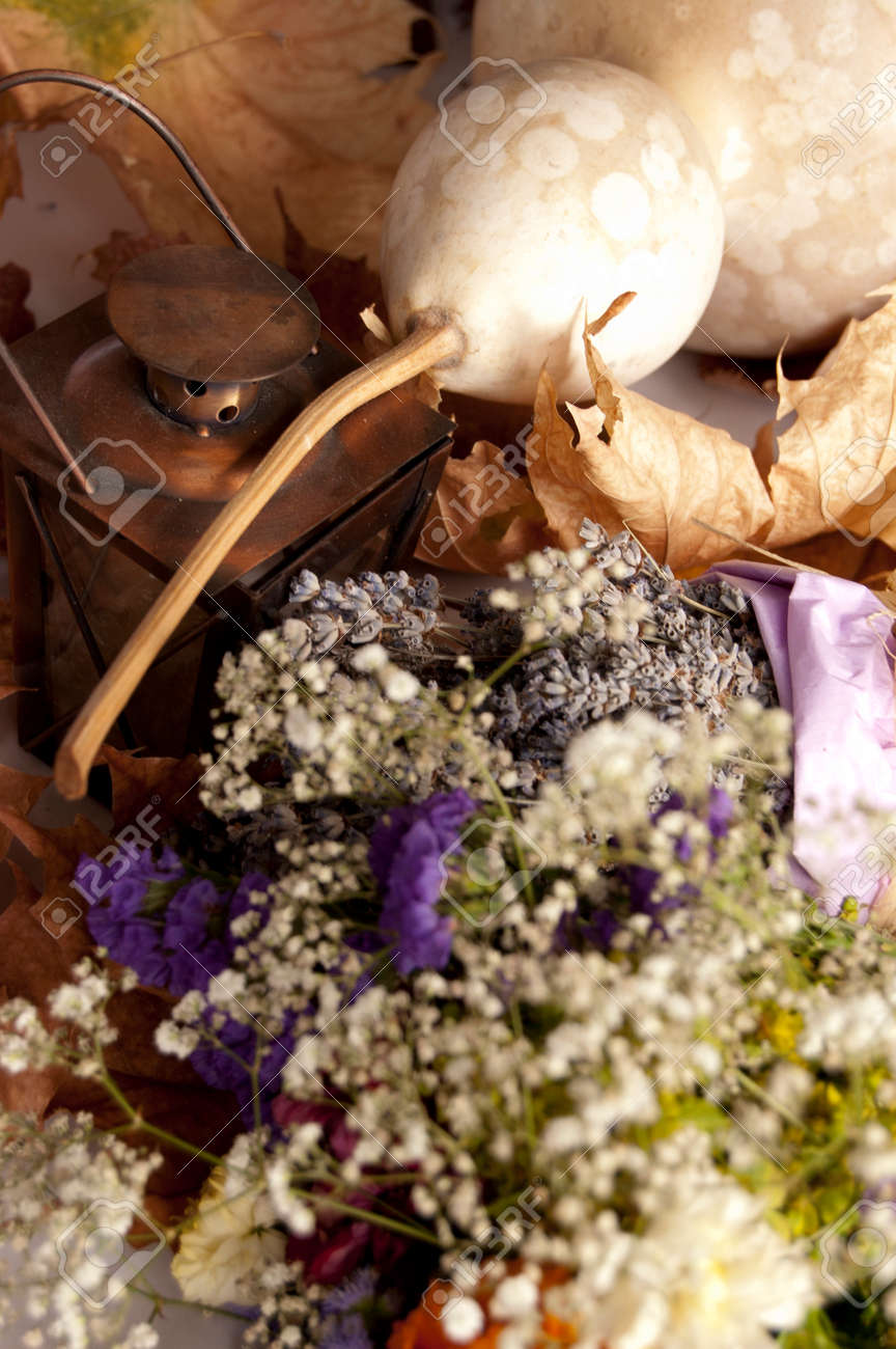 Lavender Dry Flower Bouquet And Pumpkin Still Life Composition Stock Photo Picture And Royalty Free Image Image 22220112