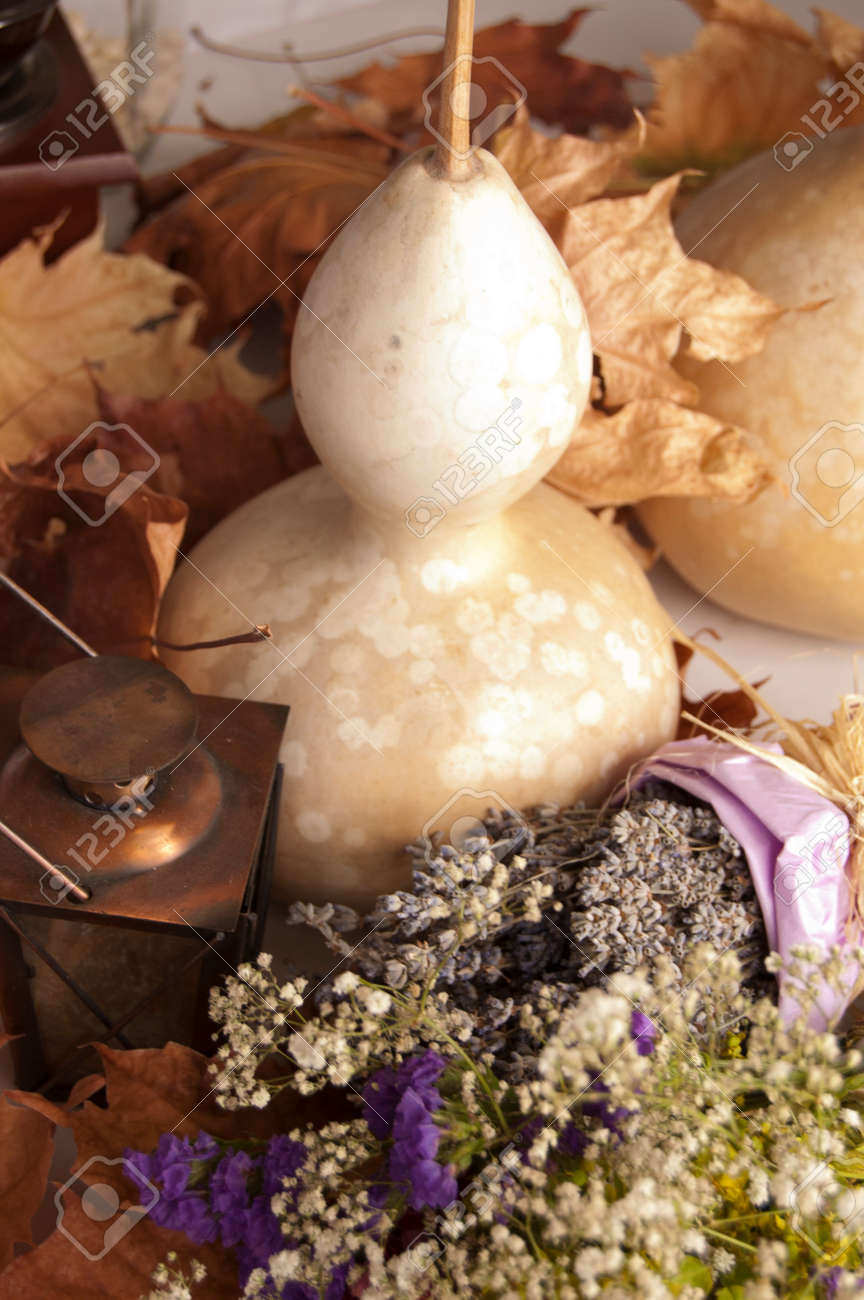 Lavender Dry Flower Bouquet And Pumpkin Still Life Composition Stock Photo Picture And Royalty Free Image Image 22220114