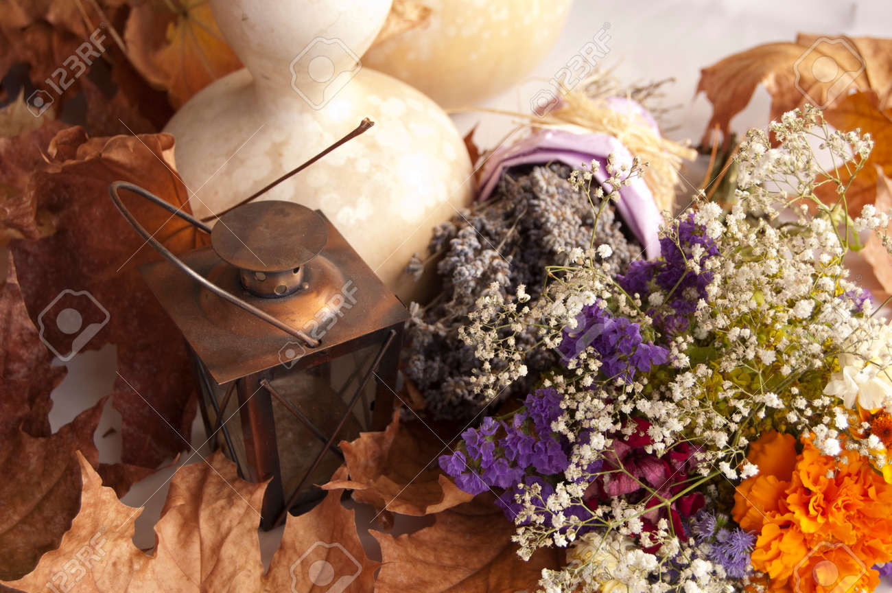 Lavender Dry Flower Bouquet And Pumpkin Still Life Composition Stock Photo Picture And Royalty Free Image Image 22220115
