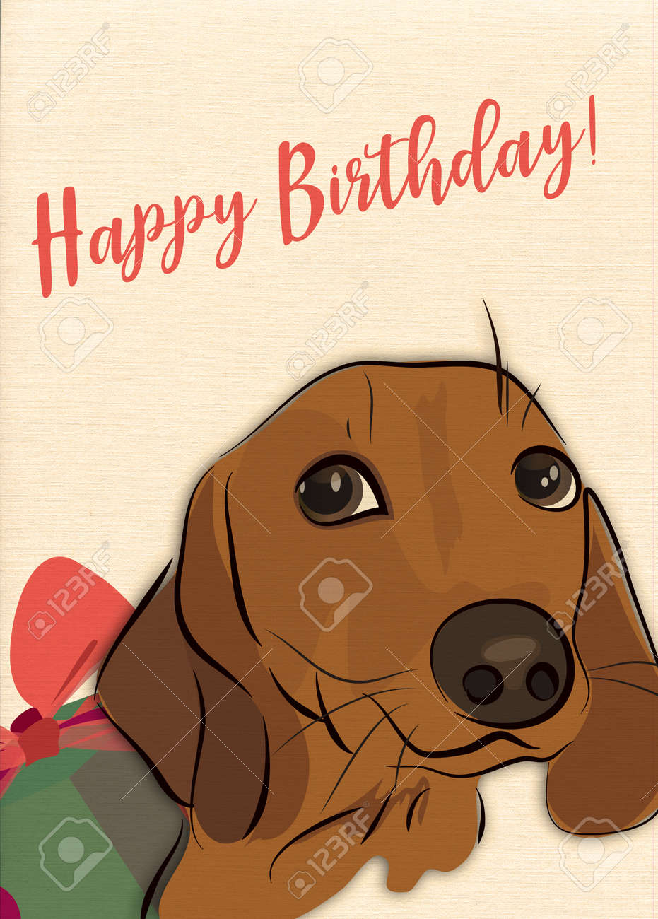 Happy Birthday Greeting Card With Sausage Dog And Present Stock Photo