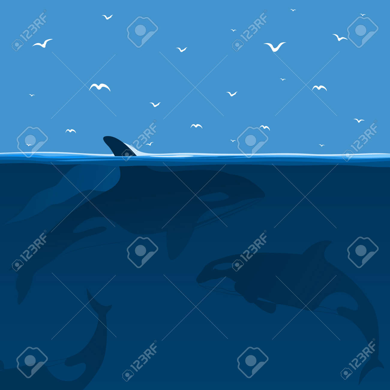 Whales hunt in the sea  A vector illustration Stock Vector - 12772863