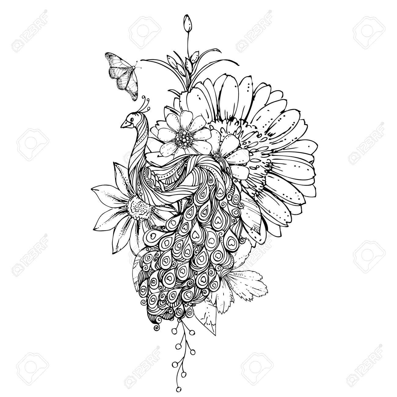 Tinte Doodle Pfau Und Blumen Auf Weißem Hintergrund Ausmalbilder