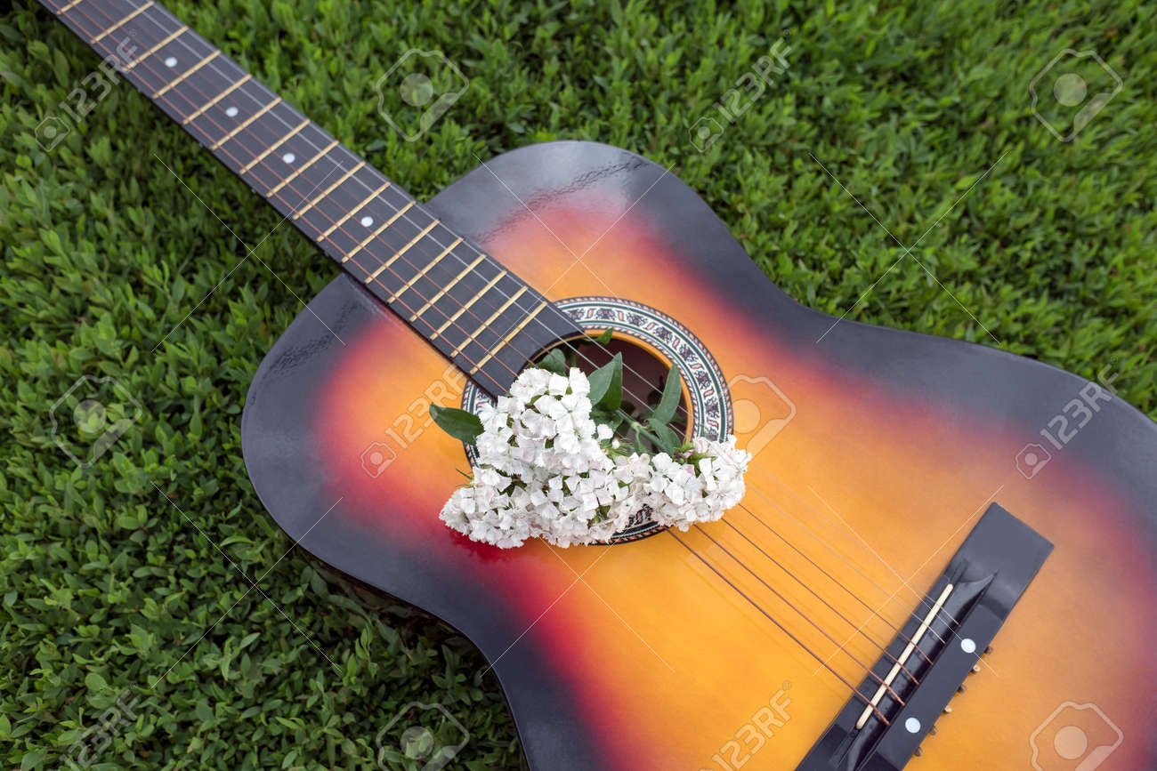 Acoustic Guitar And Wild Flowers Are In Green Grass In Summer