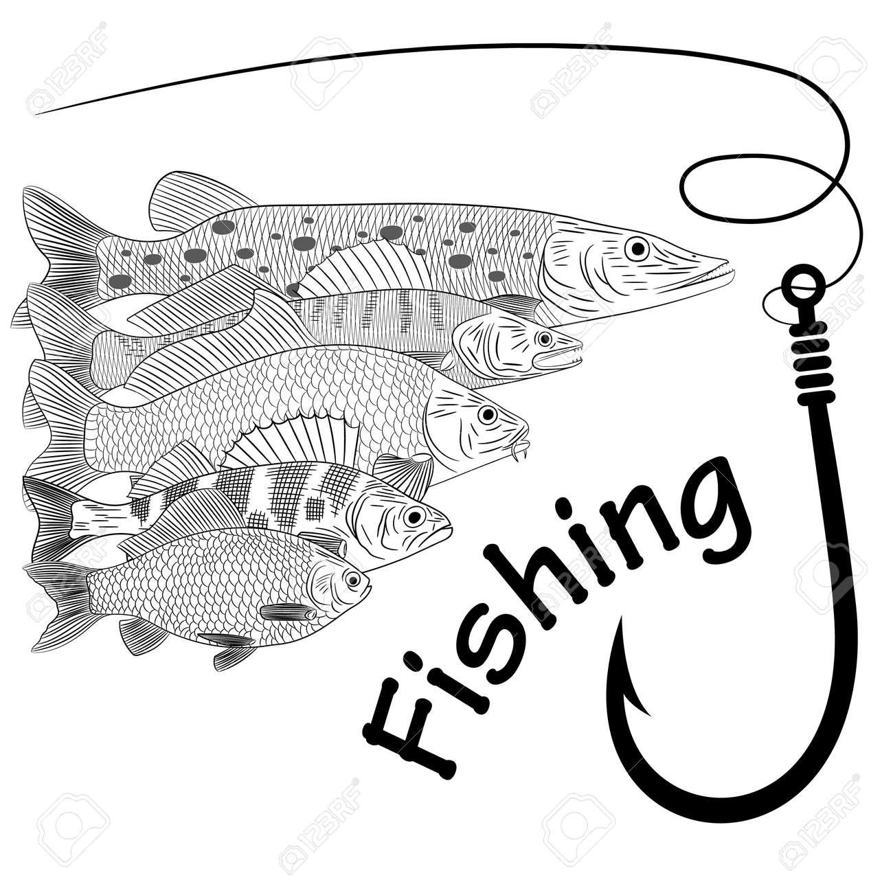 Drawing on the theme of river fish pike pikeperch carp crucian carp