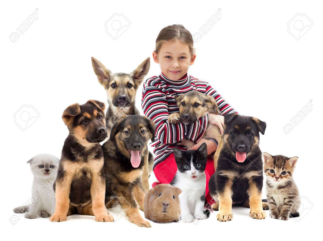 child and puppy - 33655729