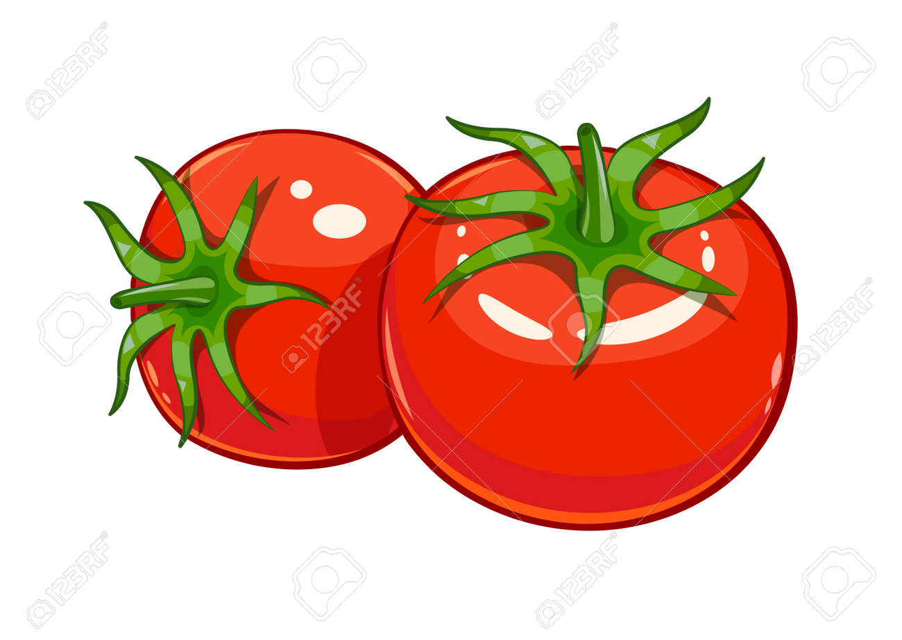 Pair red ripe tomato vector illustration, Eps10 Isolated white background - 53440192