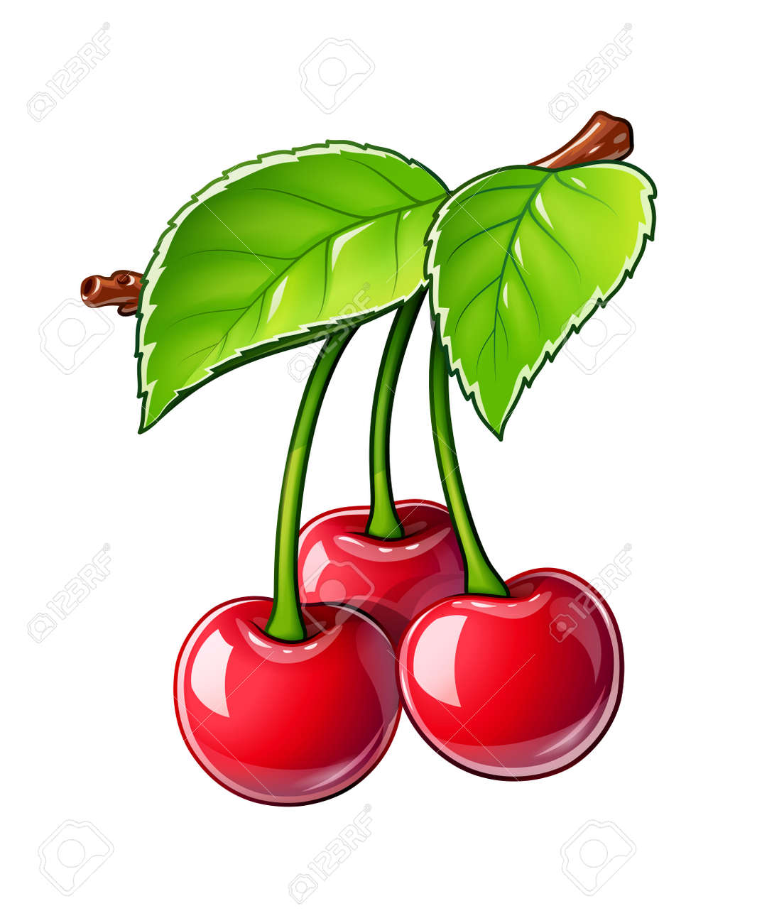 Cherry. Ripe juicy berry. Red fruit with leaf, Isolated on white background. - 168582645