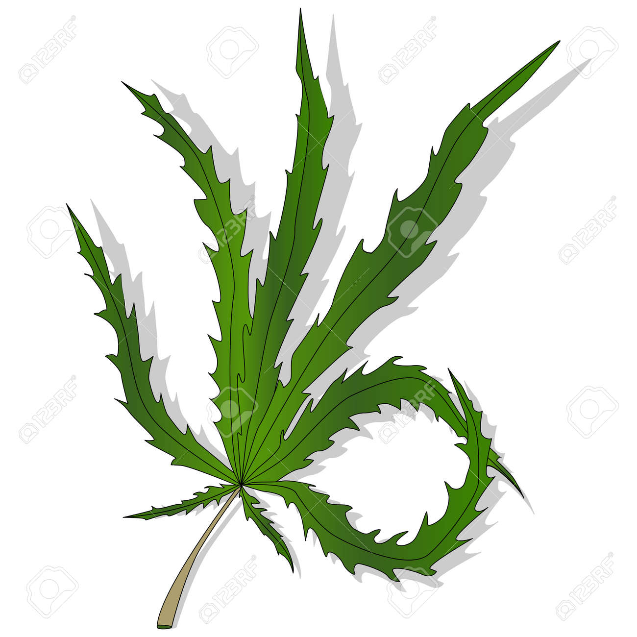 cannabis leaf vector isolated on white background royalty free rh 123rf com weed leaf vector download weed leaf vector file