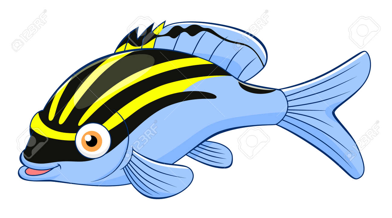 cartoon cute monocle bream royalty free cliparts vectors and stock rh 123rf com Bream Fish Recipes Types of Freshwater Bream Fish