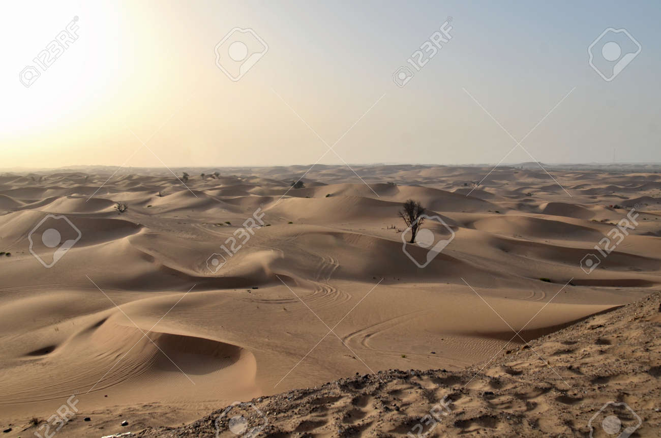 The dunes in the desert, Dubai, United Arab Emirates - 106233230