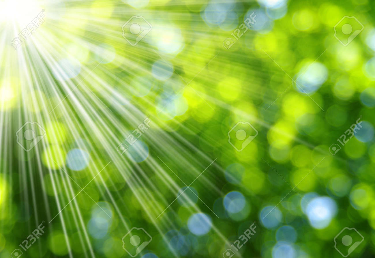 Green blurred background and sunlight Banque d'images - 39695849