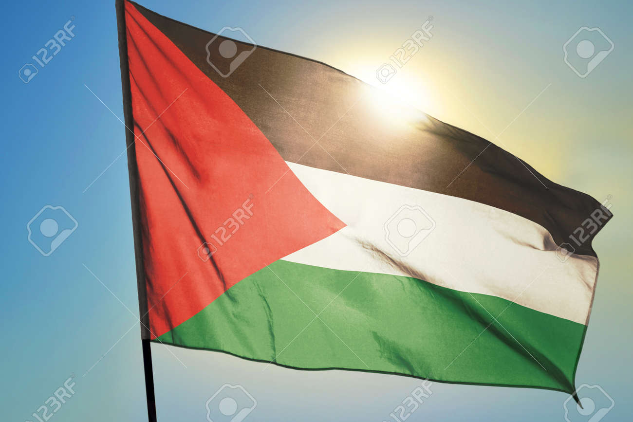 Palestine flag waving on the wind in front of sun - 166480127