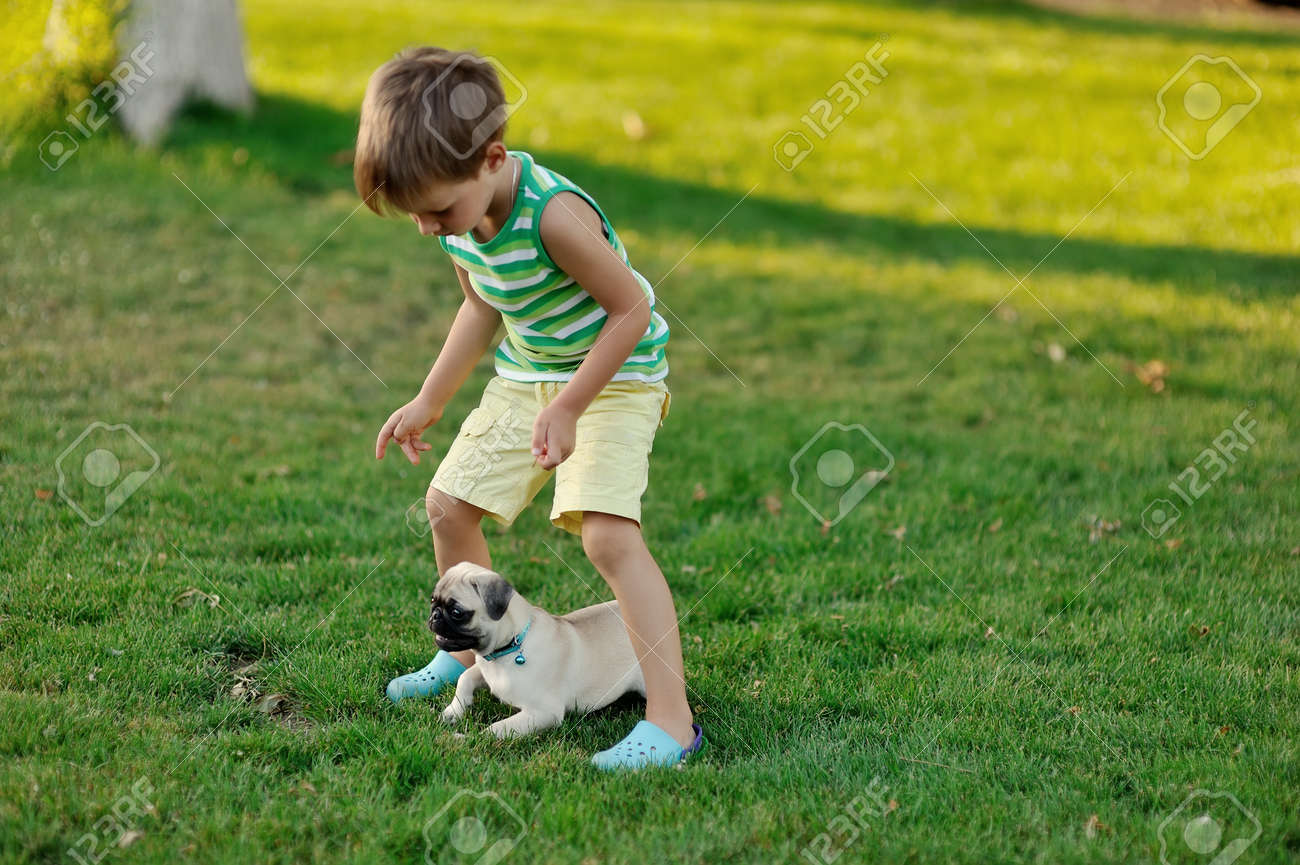 on a lawn play the child with a puppy of a pug Stock Photo - 14689593