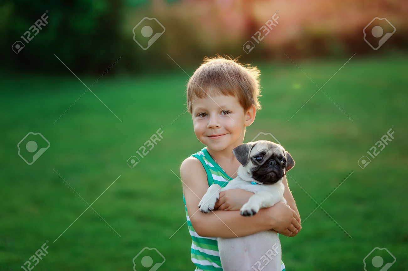on a lawn play the child with a puppy of a pug Stock Photo - 14689573