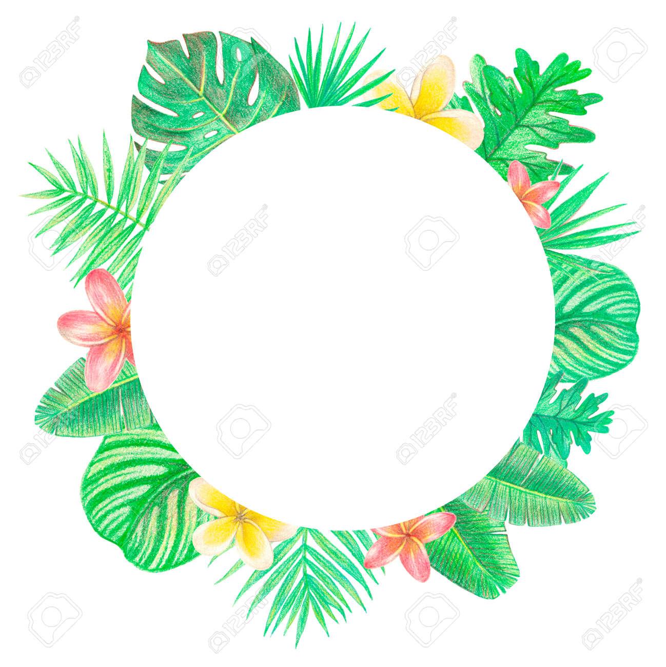 Tropical Exotic Leaves And Flowers Circle Frame Palm Leaves Stock Photo Picture And Royalty Free Image Image 103444220 Search and find more on vippng. tropical exotic leaves and flowers circle frame palm leaves