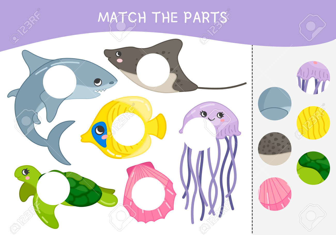 Matching children educational game  Match parts of sea animals