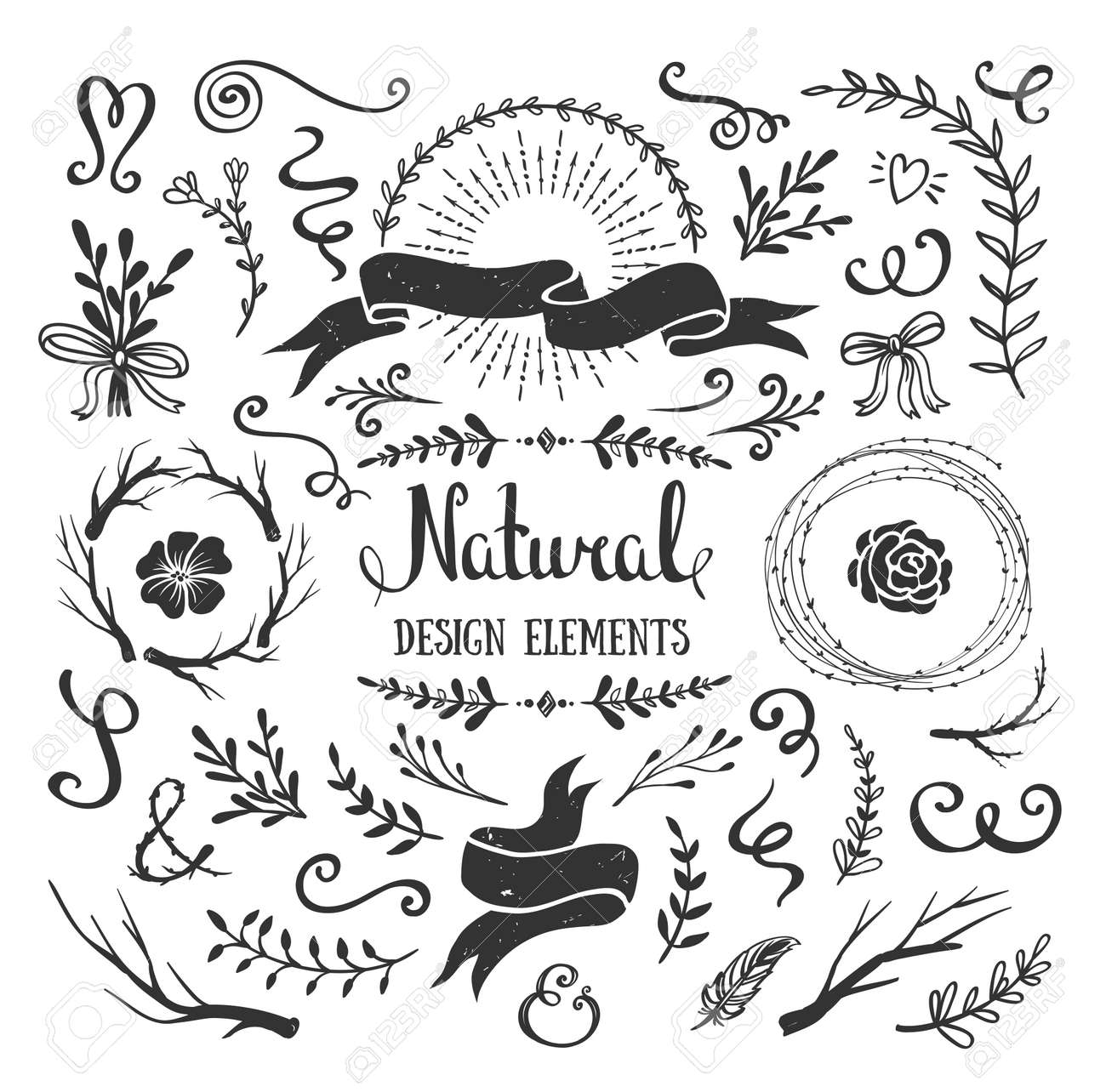 Vintage Graphic Set Of Flowers Branches Leafs And Rustic Design Elements Isolated Floral