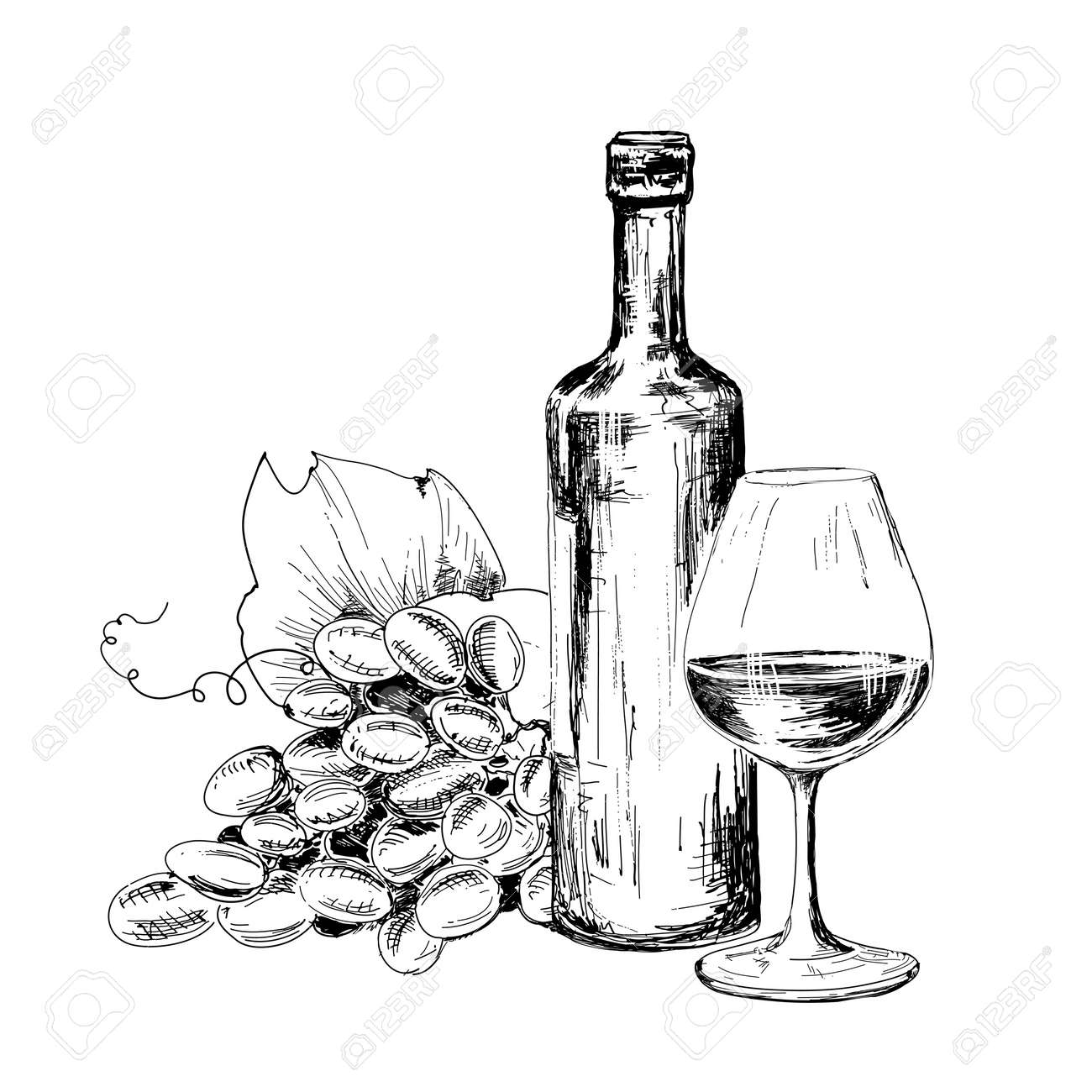 Bottle Of Wine Glass And Grapes Hand Drawn Illustratuin Royalty