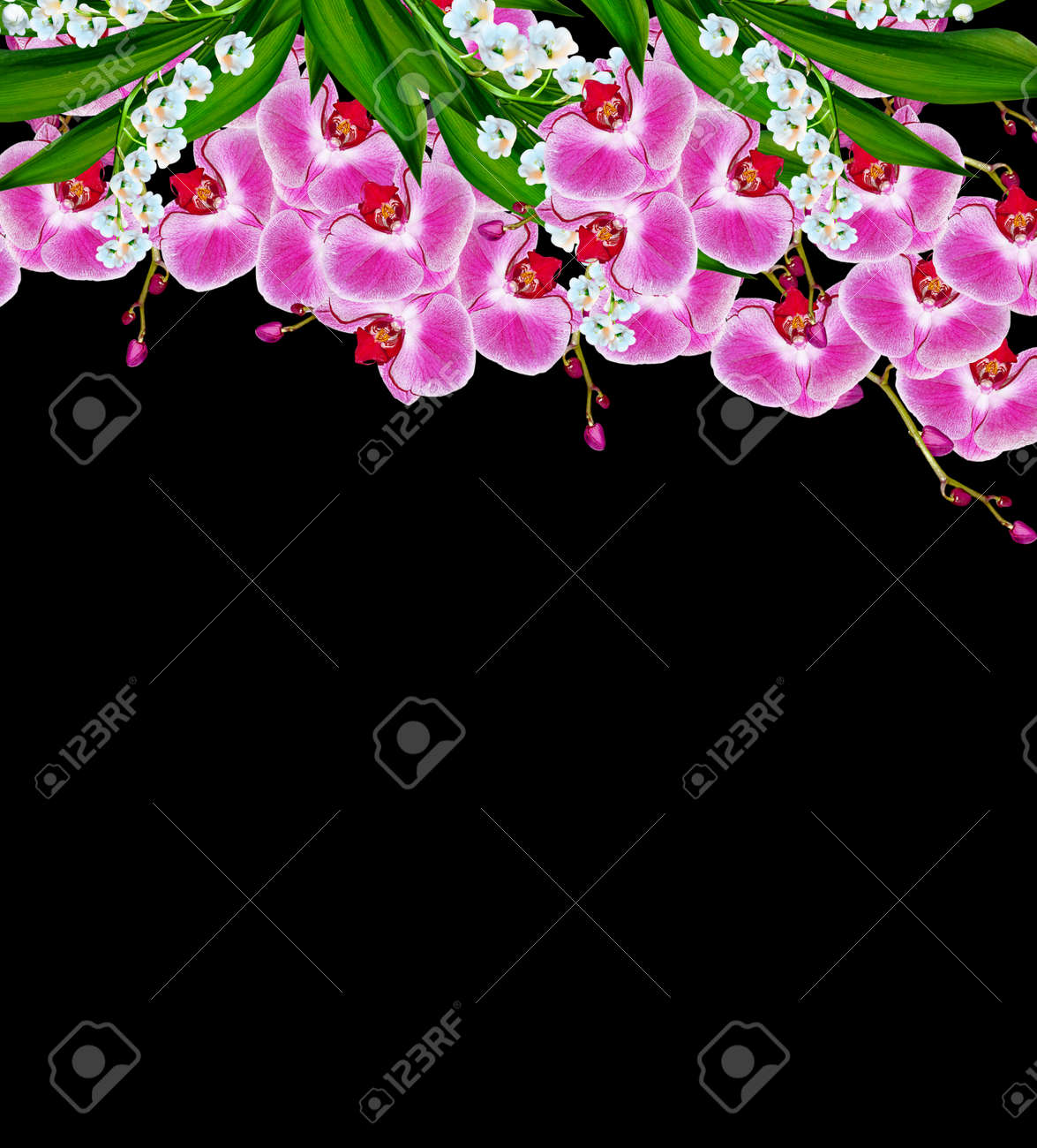 Flowers Orchids And Lilies Of The Valley Isolated On A Black Stock