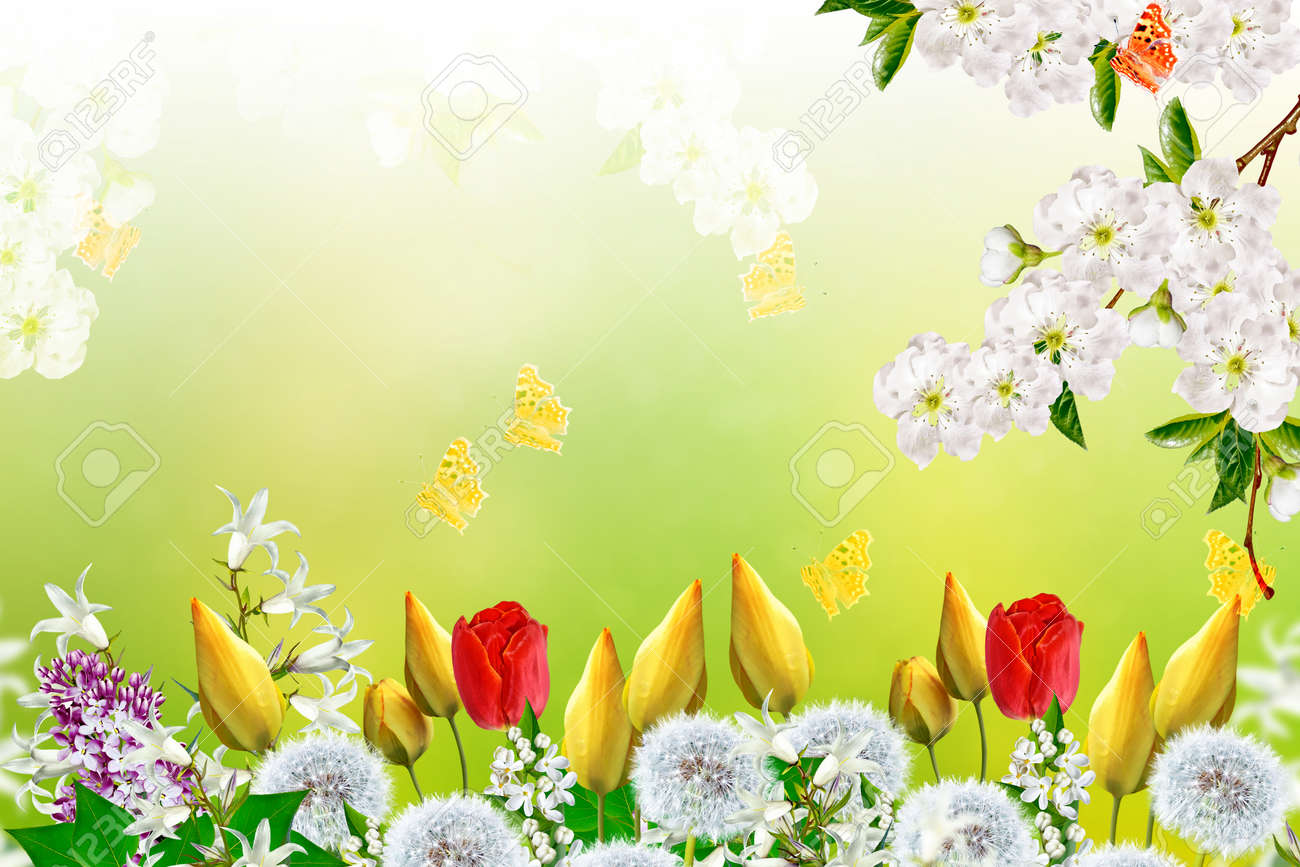 Floral Background With Bright Spring Flowers Stock Photo Picture
