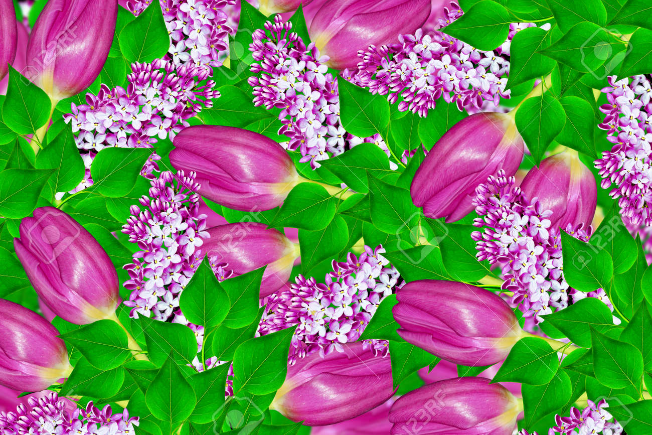 Natural Floral Background Spring Flowers Tulips Lilac Lizenzfreie