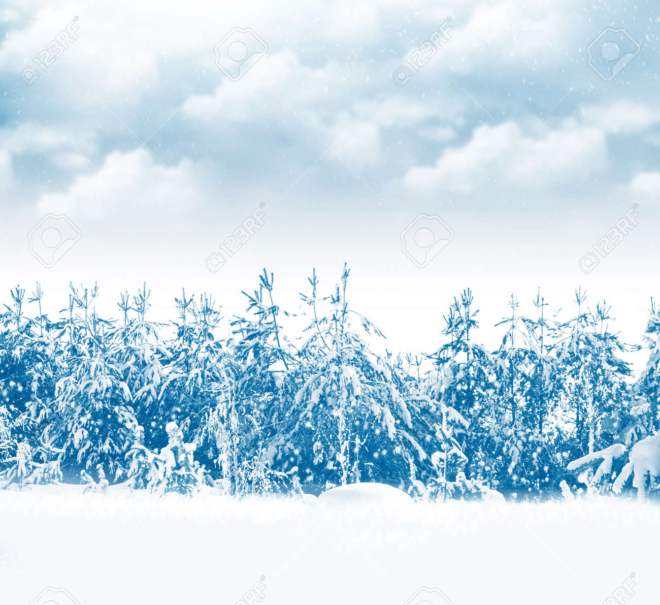 Frozen winter forest with snow covered trees. outdoor - 158519936