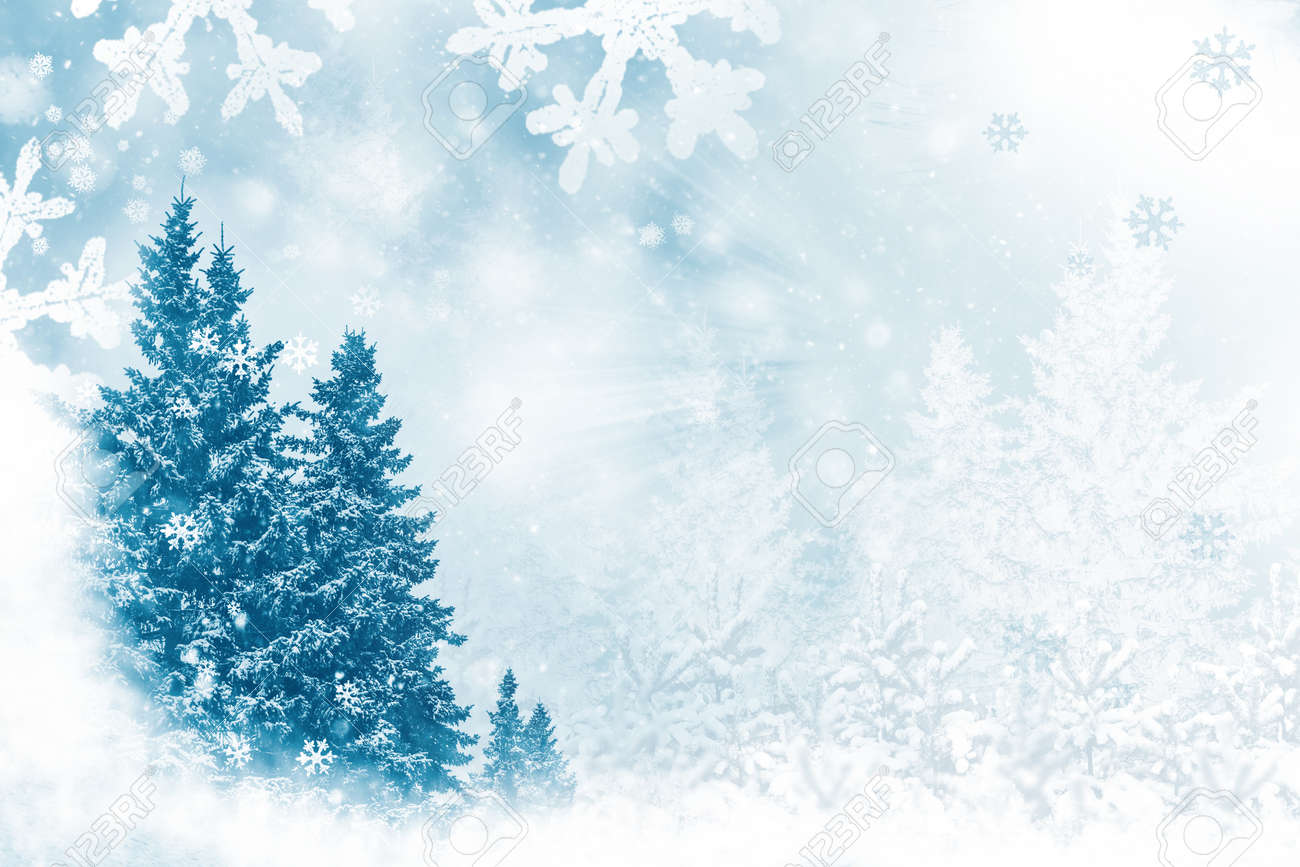Merry Christmas and Happy New Year. Frozen winter forest with snow covered trees. outdoor - 159800440